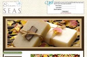 webdesign portfolio ecommerce